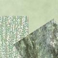 Светло-зеленые туманы