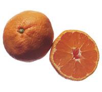 ликер домашний апельсиновый