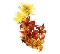Lenagold клипарт желто красные цветы 5