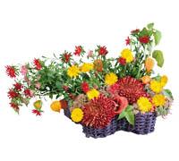 Lenagold клипарт желто красные цветы 2