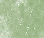 Обои - светло-зеленый туман