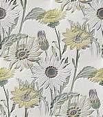 http://www.lenagold.ru/fon/flo/rom/daisy04.jpg